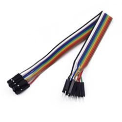 Linea Dupont 10 pin